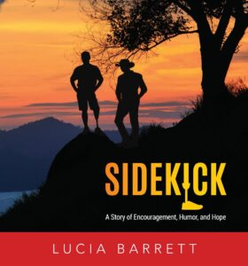 novel by Lucia Barrett, Sidekick